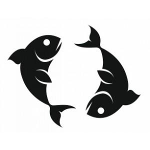 signe du poisson